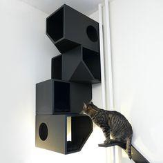 Nichos Modernos para Gatos