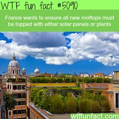 France law requires new rooftops to be topped with solar panels or plants - WTF fun facts  See more DIY projects/lifehacks here gwyl.io/