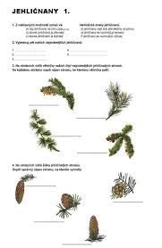 Imagini pentru karty roční doby montessori