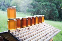 Harvesting honey with Flow™ is easier on the beekeeper and so much easier on the bees.   Crowdfunding is a democratic way to support the fundraising needs of your community. Make a contribution today!