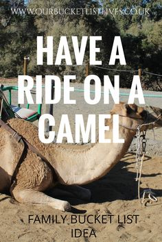 Another one ticked off the bucket list. We went for a 'Ride on a camel' on our holiday to Gran canaria. You can read all about it and we have a video too. Why not give it a go? We had lots of fun and would highly recommend. They don't smell too bad and spitting is a bit of a myth