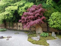 南禅寺方丈の中庭と南禅寺垣。