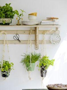 outdoor plant and dish rack | Bloemenbureau Holland