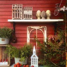 Hoppas ni har en fin dag, här har en underbar dag med solsken ❤️ #mygarden  #advent #christmas #sweden #loves_sweden #finahem #mynorwegianhome #vakrehjemoginteriør #landliv #lantliv #landligt #landglück #landleben