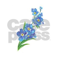 forget me not Paintings On Canvas | Forget Me Not Flower Watercolor Painting…