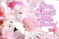 CDB CARTOLINE Compleanno per Tutti i Gusti! : Cartolina Auguri di Buon Giovedì e Felice Giornata...