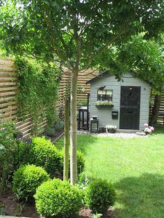 Bläddrar bakåt i bloggen och hittar den här bilden från min trädgård, tagen den 2 juni förra året. Även om det blir grönare och gröna...