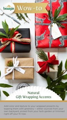 With these green accenting tips, you'll be a natural at holiday gift wrapping. Brought to you by the Boursin Purveyor of Wow Shop.