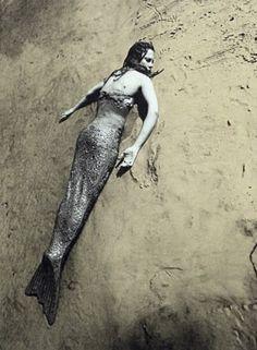 Janaina Tschäpe - La sirène
