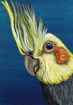 ACEO ATC Cockatiel Two Bird Art Original Painting-Carla Smale #Realism