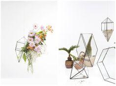 The Sculptural Terrarium - By Living Room Glass.  OnlyElla.com