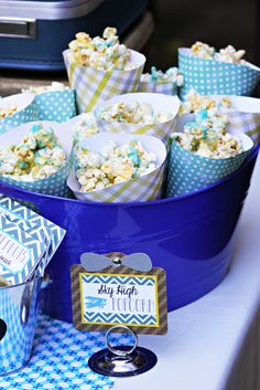 "Photo 7 of 19: Airplane / Birthday ""Vintage Airplane Birthday!"" 