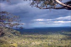 chizarira national park zimbabwe - Google Search image: news. bbc.co.uk- Image News, Zimbabwe, Its A Wonderful Life, Homeland, Bbc, Countries, Past, Safari, Birth