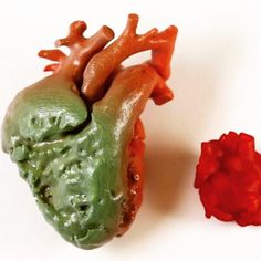Something we liked from Instagram! If you think 3D Printed Kidney's are cool check out this 3D Printed heart that  Surgeons at Sick Kids Hospital in Toronto Canada use to practice infant surgery  @raysspl @mitcheldumlao805 @daviderod #eezitec #3dprinting #heart #surgery #science #medical #biotech #startups #builtinla #3dprinted #3dprinter #3dp #love #photooftheday #picoftheday #beautiful #instadaily #technology #tech #design #bestoftheday #amazing by eezitec check us out…