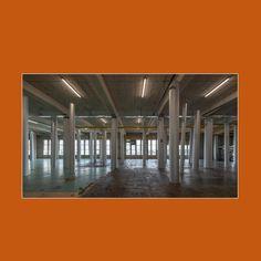 Gabriel Lester (°1972), is een uitvinder. Zijn werken bestaan uit installaties, sculpturen, performances en films. Hij ontwierp voor CHAPTER 1NE een kunstinstallatie die tevens dienstdoet als trainingsdomein voor de deelnemers van de Boksclinic. 'Neck of the woods', 2019, een woud van grijze zuilen in het Hem, een oude kogelfabriek in Zaandam. Contemporary Artists, Film, Movie, Film Stock, Cinema, Films