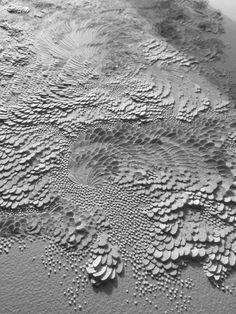 (c) Lauren Collin Bas Relief en Papier Aquarelle Grain Satiné Format 20x15 cm      Blanc sur blanc... Bas reliefs où les pétales de papier...