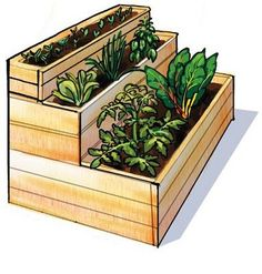 Custom build a multilevel raised bed that offers several sections for different types of plants.