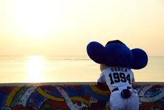 夕日を見つめるドアラ=沖縄県北谷町の北谷公園(撮影・森本幸一)