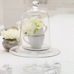 Glass Cake Stand from The White Company Glass Candle, Glass Jars, Cloche Decor, The Bell Jar, Bell Jars, Bloom Blossom, The White Company, House On A Hill, Apothecary Jars