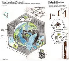 Hexagon Sign Plan_2.13.13 by Molly Danielsson, via Flickr Beacon Food, House Insects, Cedar Posts, Long Sides, Forest Illustration, Stone Countertops, Honeycomb, Nativity, Tiles