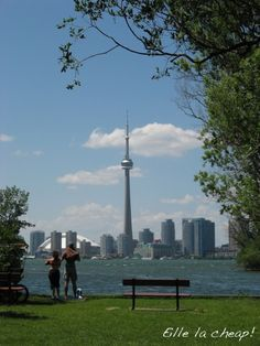 Toronto postcard.