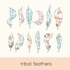 tribal feathers, digital clip art