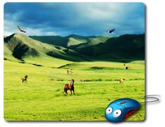 Mouse Mat great computer pad office accessories computer desk accessory best mouse pad Computer Mouse Photo mouse pad Nature Images Amazingly picture beautiful photo of a Nature Landscape Steppes Mountains Vegetation Nature and birds - Beauty gifts for Home decor or Office decor adds charm to your home office or workplace.  Beautiful Mousepads are rectangle shaped stylish omfortable mouse pads.