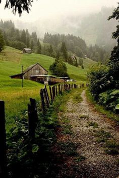"""yellowrose543:  """"Image via We Heart It http://weheartit.com/entry/267909611 #country-farm  """""""