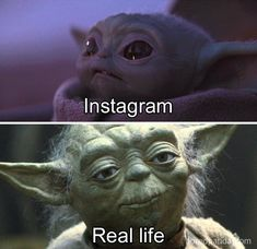 Are you searching for cute and funny memes of baby yoda? Check out our collection of the best top 10 funny baby yoda memes below. Yoda Gif, Yoda Meme, Yoda Funny, Funny Baby Memes, Funny Puns, Funny Relatable Memes, 9gag Funny, Funny Babies, Baby Humor