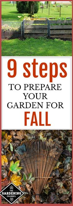 Steps to prepare your garden for fall.  Gardening is not over in the summer.  Follow these 9 steps to make sure you plants thrive.
