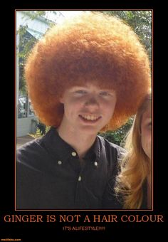 No But RED Is!!!!  The Very Rare Red Afro, They Are So Rare You Must Take Caution In Approaching As To Not Spook Them, If Spooked They Will Retreat Back Into The VW Bus Parked Around The Corner!!!