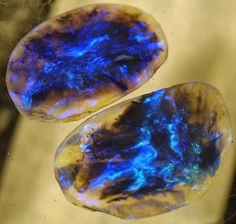 The Lightning Ridge Black Opal is from Australia. Black opals are rare and very sought after. Judging by how these look, I can see why.