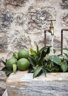 Sunny holiday villa on the beautiful island of Mallorca Wabi Sabi, Ibiza, Outdoor Sinks, Terrazo, Outdoor Stone, Shabby Home, Stone Sink, Ivy House, Aging Wood