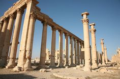 Untitled | by newpalmyra Palmyra, In 2015, Historical Images, Syria, Destruction, Art And Architecture, Survival, Explore, City
