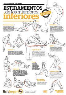 Tabla de ejercicios de estiramiento para los miembros inferiores.
