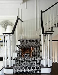 source: Virginia Macdonald Photography Chic foyer staircase with glossy black staircase handrail, glossy black stair treads, glossy white wood balusters, white 7 black Greek key fretwork stair runner and decorative wall moldings. - Futura Home Decorating Decorative Wall Molding, Wall Molding, House Styles, Staircase Styles, Stair Runner, Black And White Interior, Foyer Staircase, Staircase Handrail, Home Decor