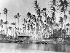 This Waikiki circa 1863 shows a grass house belonging to Bishop Estate. The Royal Hawaiian Hotel stands on the site now.   STATE ARCHIVE PHOTO