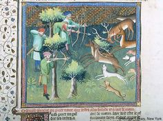 Livre de la chasse, MS M.1044 fol. 100v - Images from Medieval and Renaissance Manuscripts - The Morgan Library & Museum