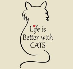 Life is Better with Cats
