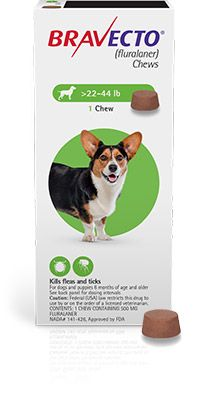 Bravecto Flea And Tick Chew Tick Treatment For Dogs Fleas Flea Meds For Cats