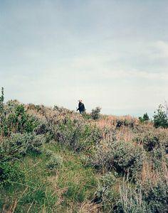 Brush covered hillsides in Wyoming