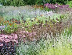 Piet Oudolf's meadow at the Hauser & Wirth gallery in Somerset   Gardens…