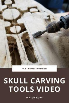 Bone Carving Burrs Tutorial Part 1 (Inverted Cone Burr)! Deer Skull Art, Cow Skull Decor, Deer Skulls, Animal Skulls, Carved Skulls, Art Carved, Antler Crafts, Antler Art, Dremel Carving