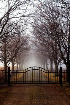 Beautifully haunting