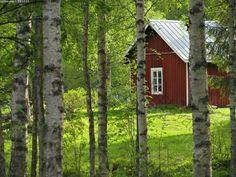 Kuva: Punainen tupa - talo mummon mummonmökki mökki kesämökki kesä ...