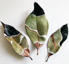 Painted Dried Magnolia Leaves by Samantha Dion BakerIt's been a little while since I've shared my leaves. Last night I paint… It's been a little while since I've shared my leaves. Last night I painted this trio of dried magnolia leaves while we played a Leaf Crafts, Diy And Crafts, Arts And Crafts, Ceramic Pottery, Ceramic Art, Deco Nature, Magnolia Leaves, Painted Leaves, Painting On Leaves