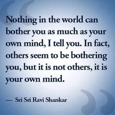 Nothing in this world can bother you as much as your own mind, I tell you.  in fact, others seem to be bothering you, but it is not others, it is your own mind. -Sri Sri Ravi Shankar