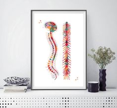 Buy it here in a variety of sizes starting at $18.55 (frame not included). Check out more anatomy watercolors from this artist here.
