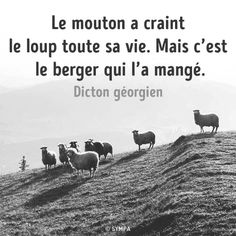 Quote Citation, French Quotes, Quote Posters, Positive Affirmations, Sarcasm, Sentences, Philosophy, Quotations, Psychology