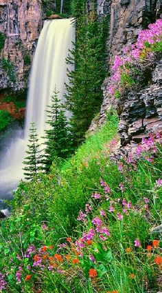 Tumalo Falls in Summer ! Tumalo Falls is a 97 foot waterfall near Bend, Oregon. It is also a phenomenal trail head for mountain biking and hiking in the Deschutes National Forest. Should take the kiddos this summer! Beautiful Waterfalls, Beautiful Landscapes, Beautiful World, Beautiful Places, Beautiful Scenery, Landscape Photography, Nature Photography, Oregon Waterfalls, Amazing Nature